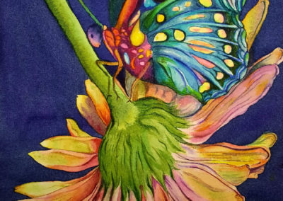 Wings and Petals - Watercolour