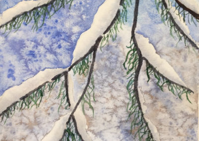 Snow On Branches - DennisMajor