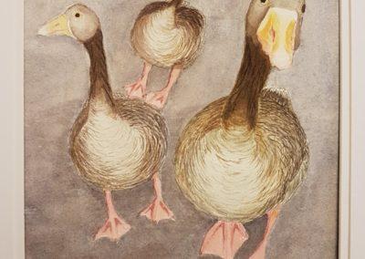 Pink Foot Geese