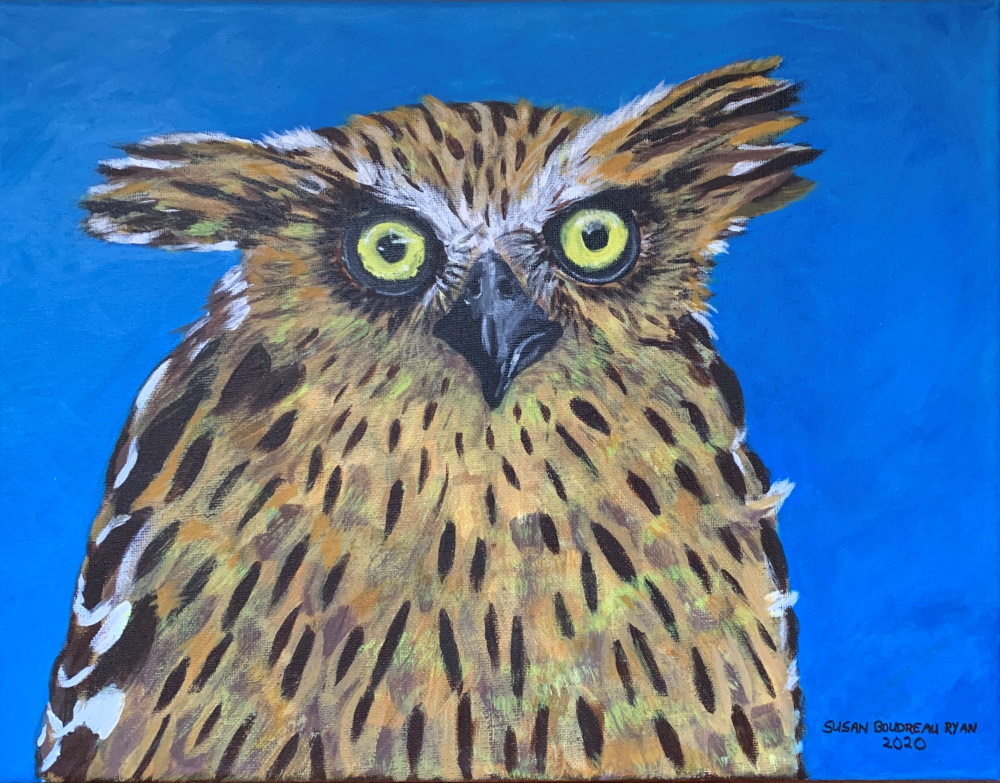 Susan Boudreau Ryan Tawny Fish Owl