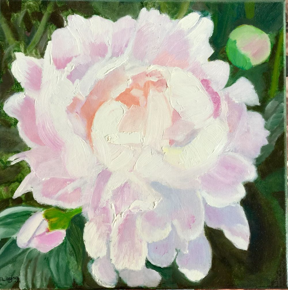 Peony with Buds by Elizabeth Layng