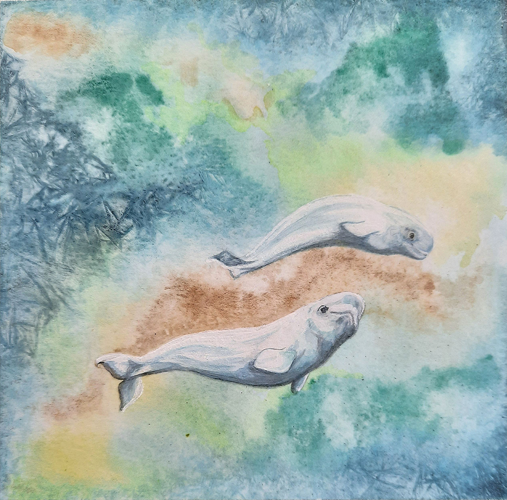 Polar Current - Beluga Whales by Sherri Friesman