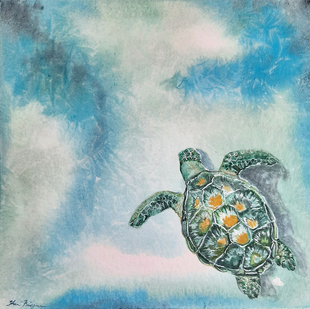 Cruising - Green Sea Turtle by Sherri Friesman